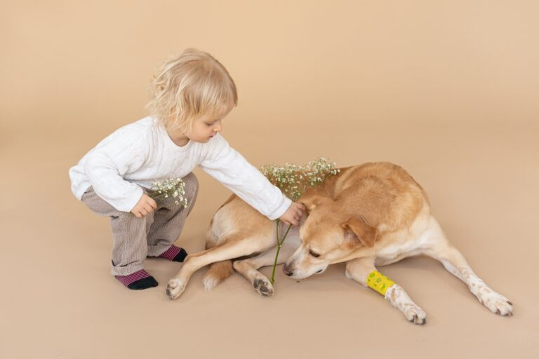 Getting a Pet for yourChild